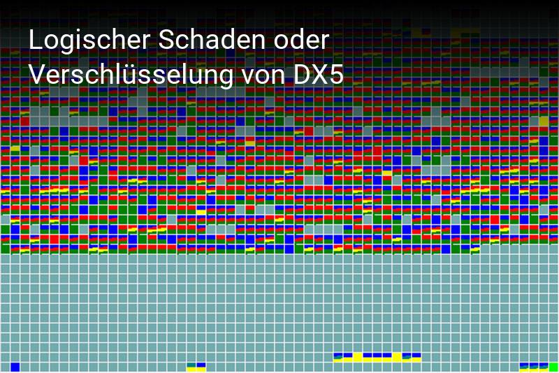 Synology DX5
