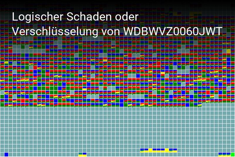 Western Digital WDBWVZ0060JWT