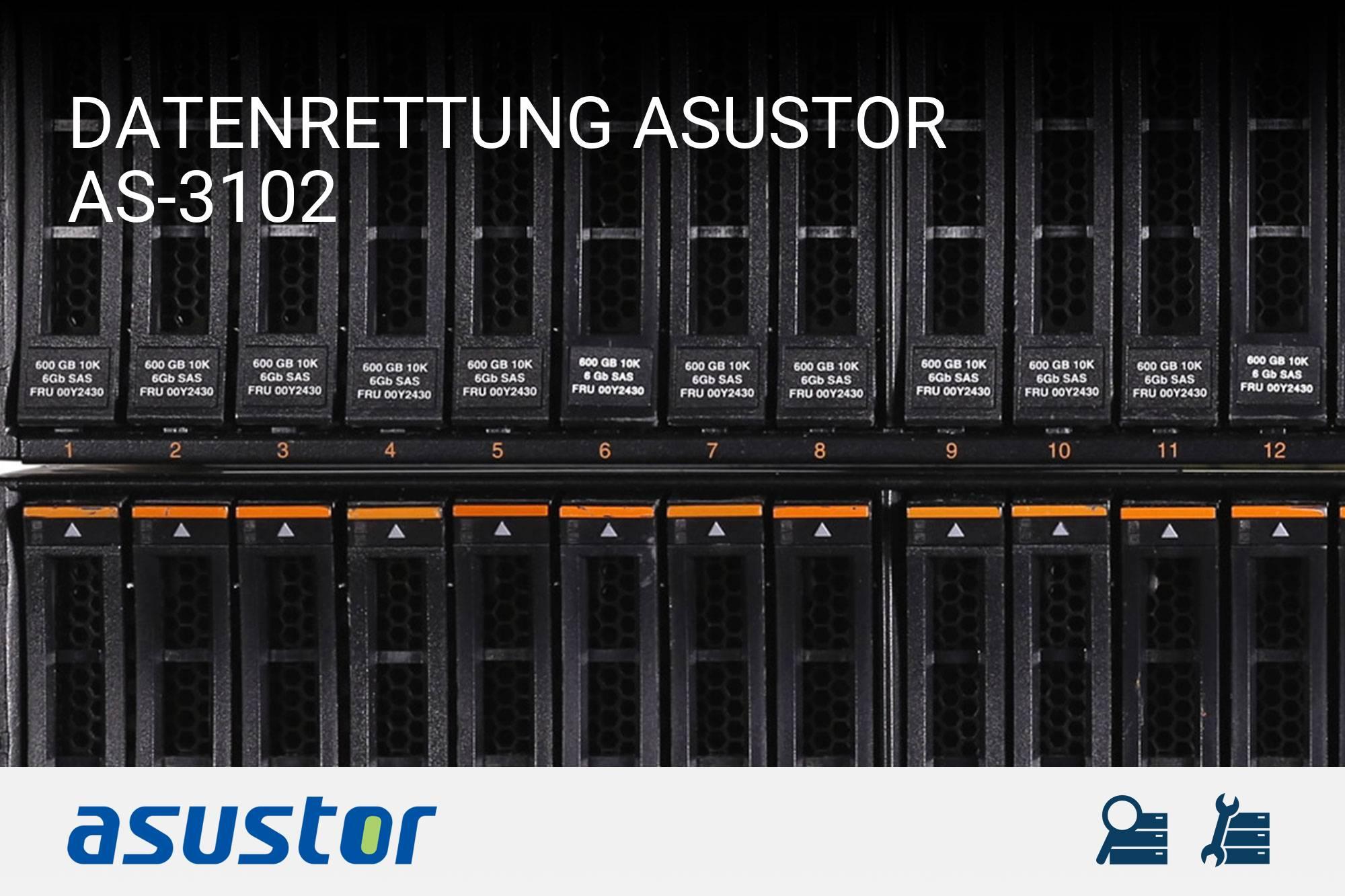 Asustor AS-3102