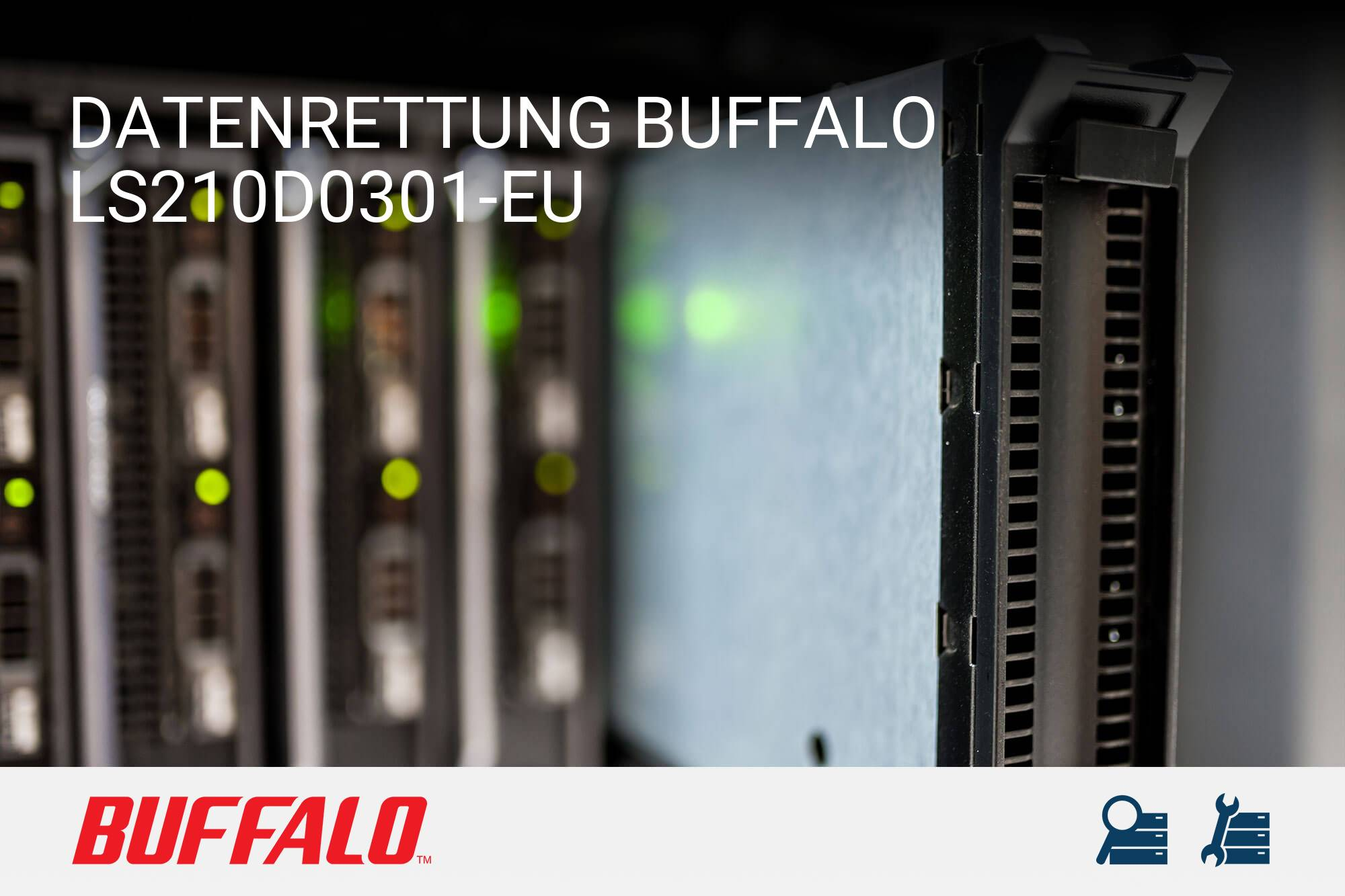 Buffalo LS210D0301-EU