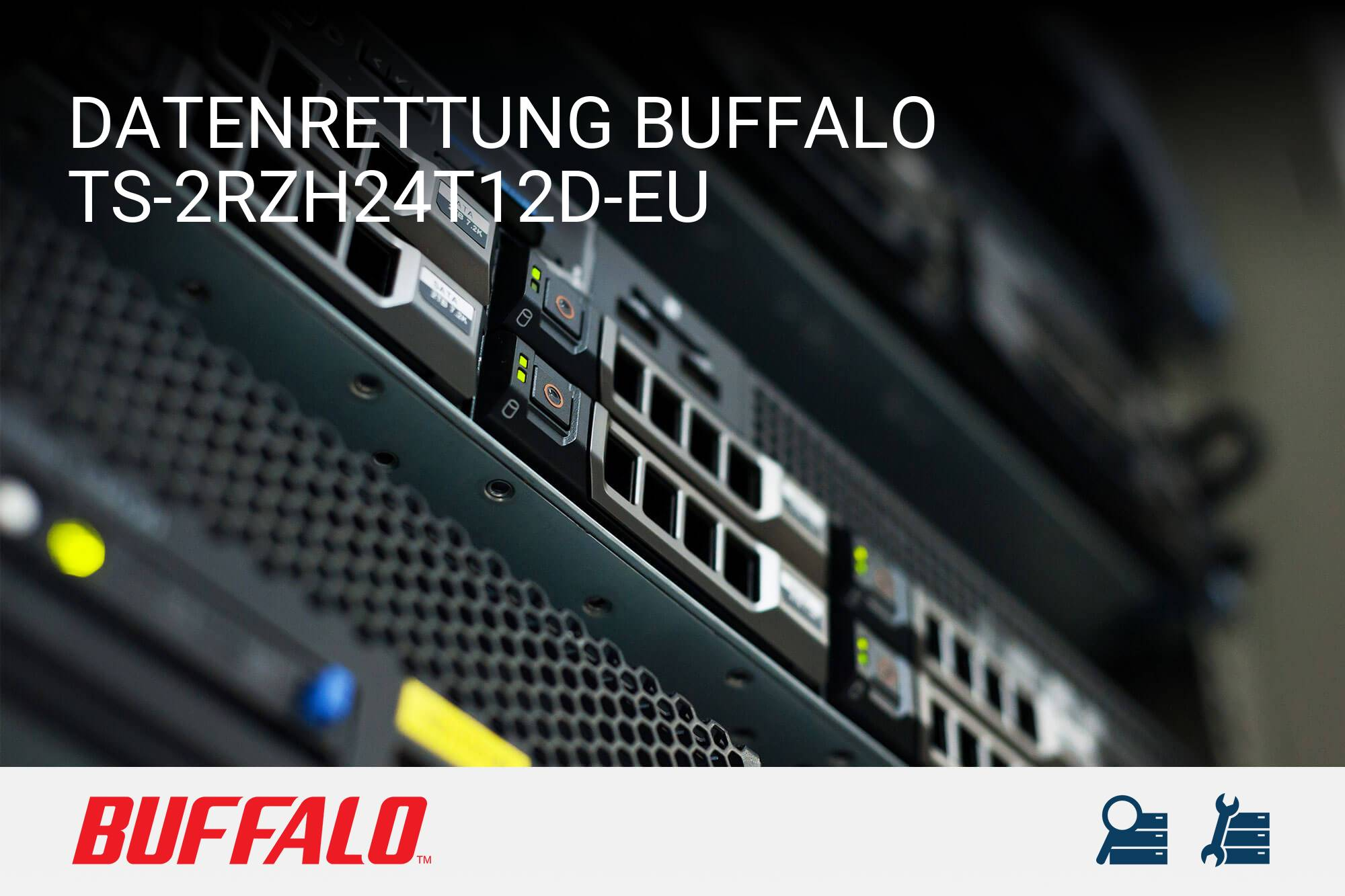 Buffalo TS-2RZH24T12D-EU
