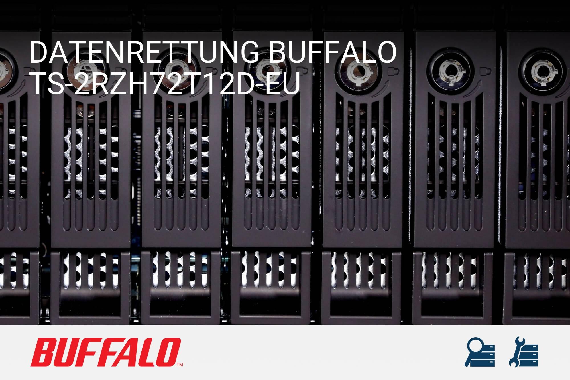 Buffalo TS-2RZH72T12D-EU