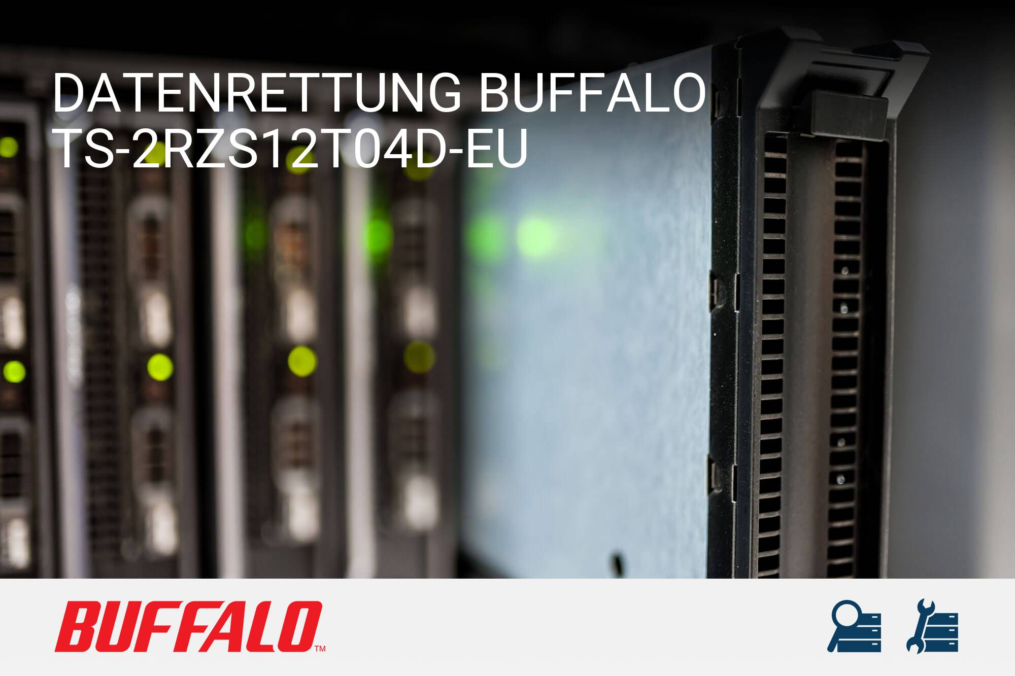 Buffalo TS-2RZS12T04D-EU