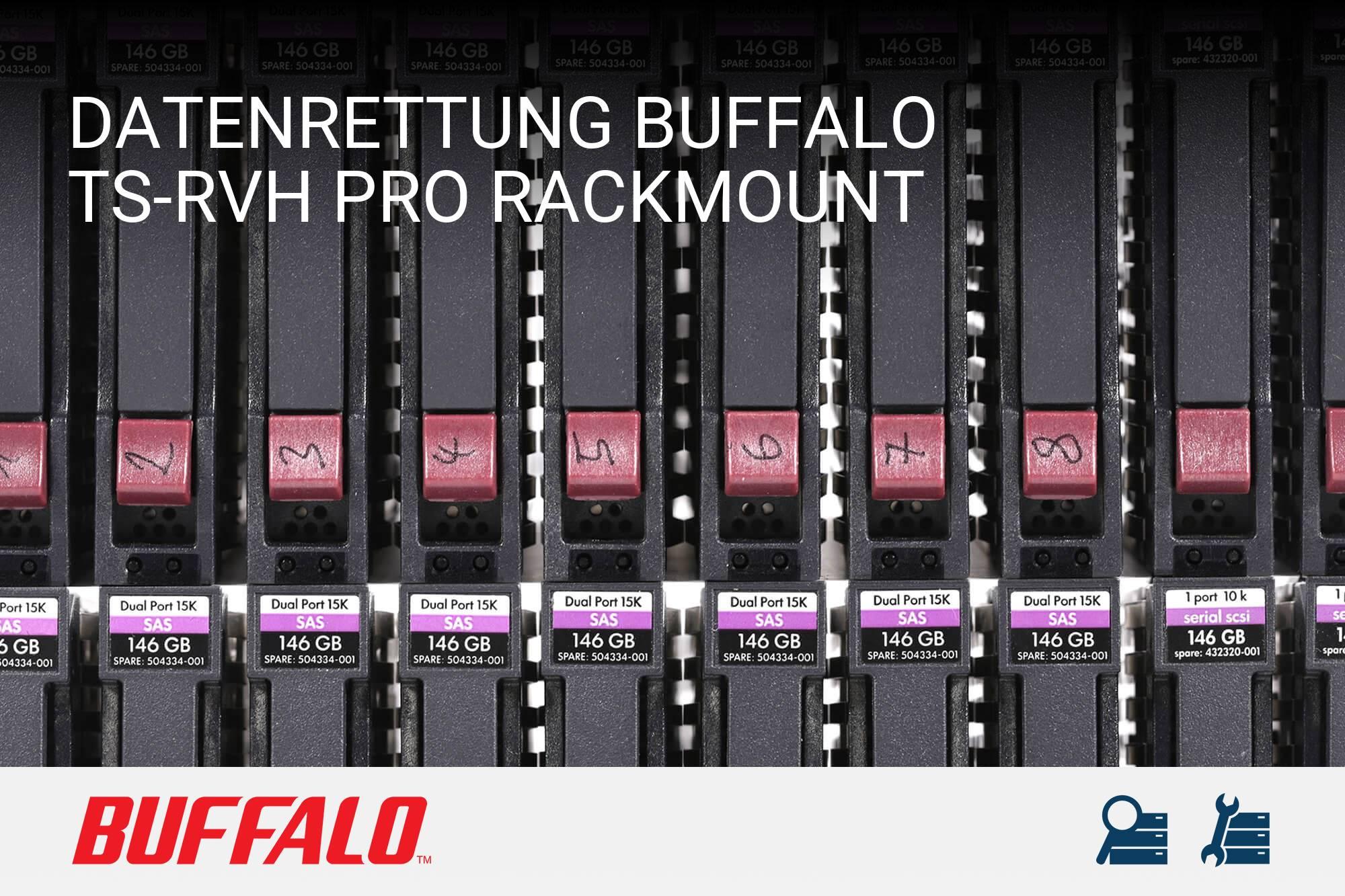 Buffalo TS-RVH Pro Rackmount