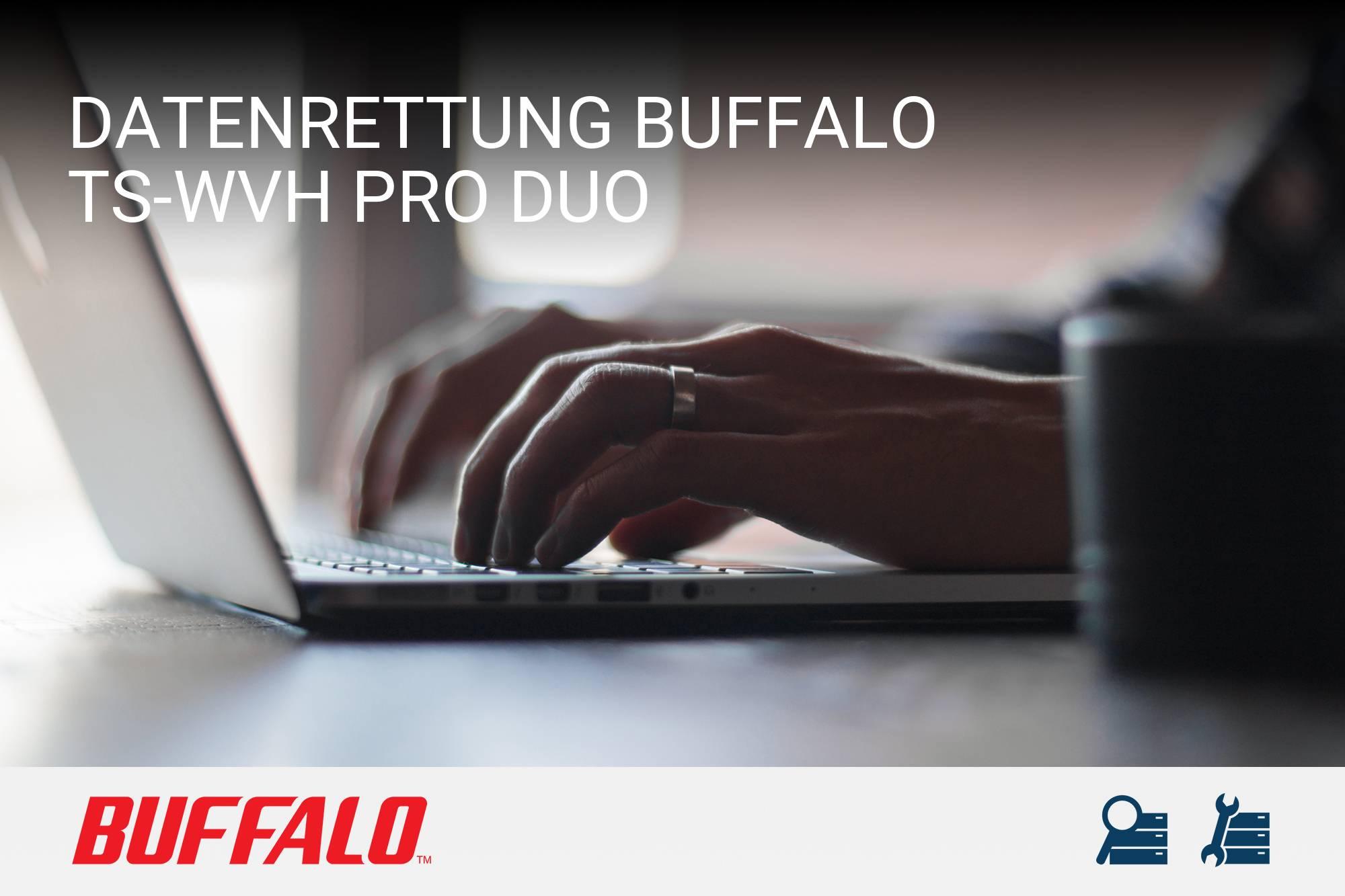 Buffalo TS-WVH Pro Duo