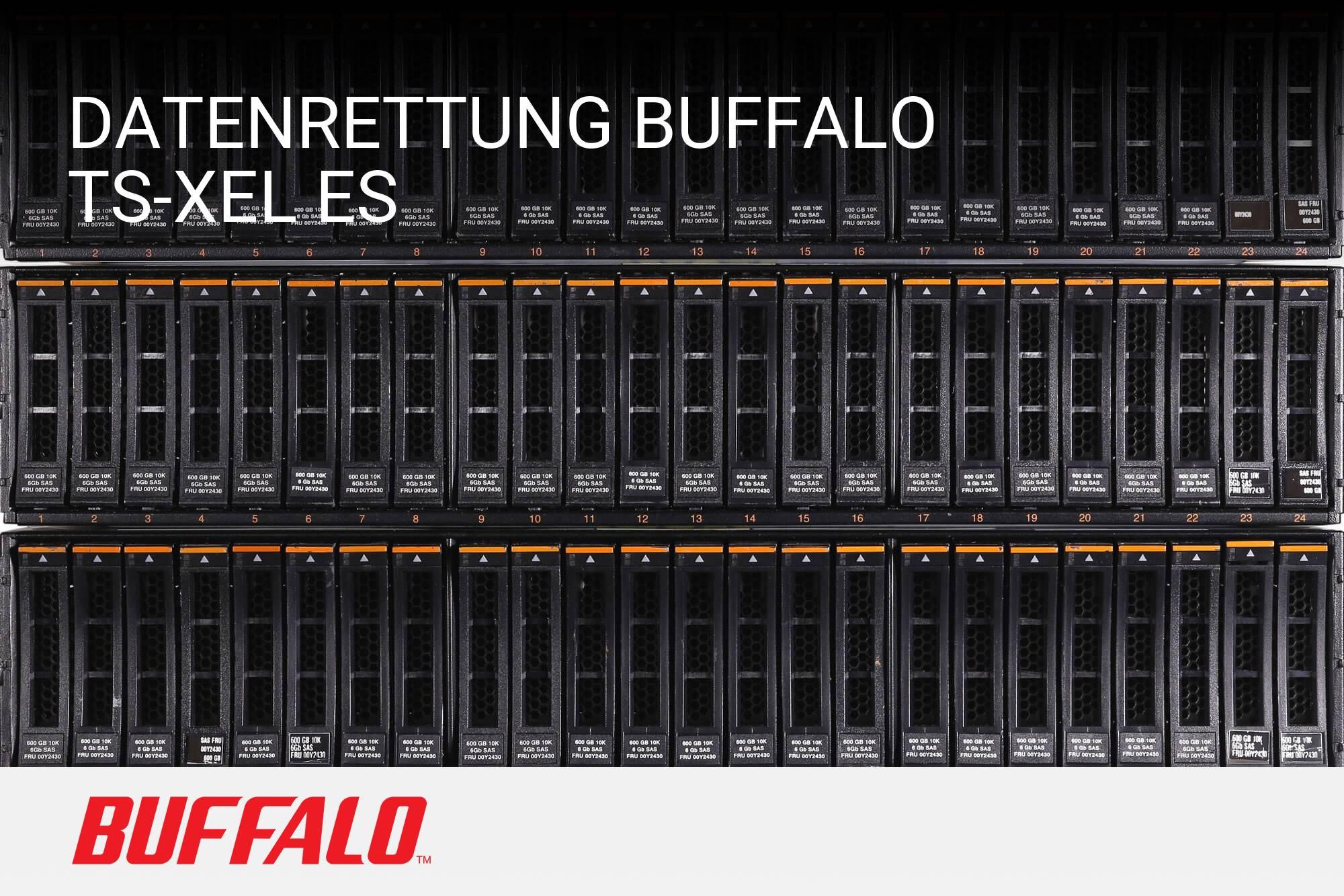 Buffalo TS-XEL ES