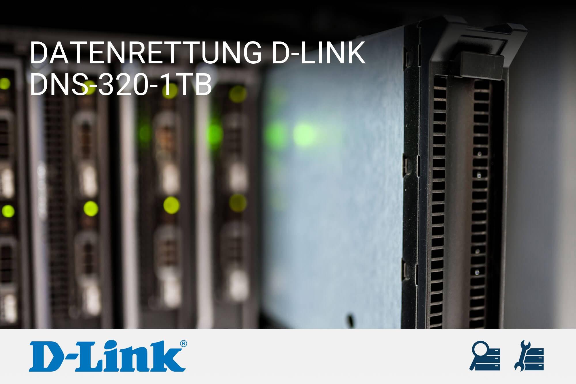 D-Link DNS-320-1TB