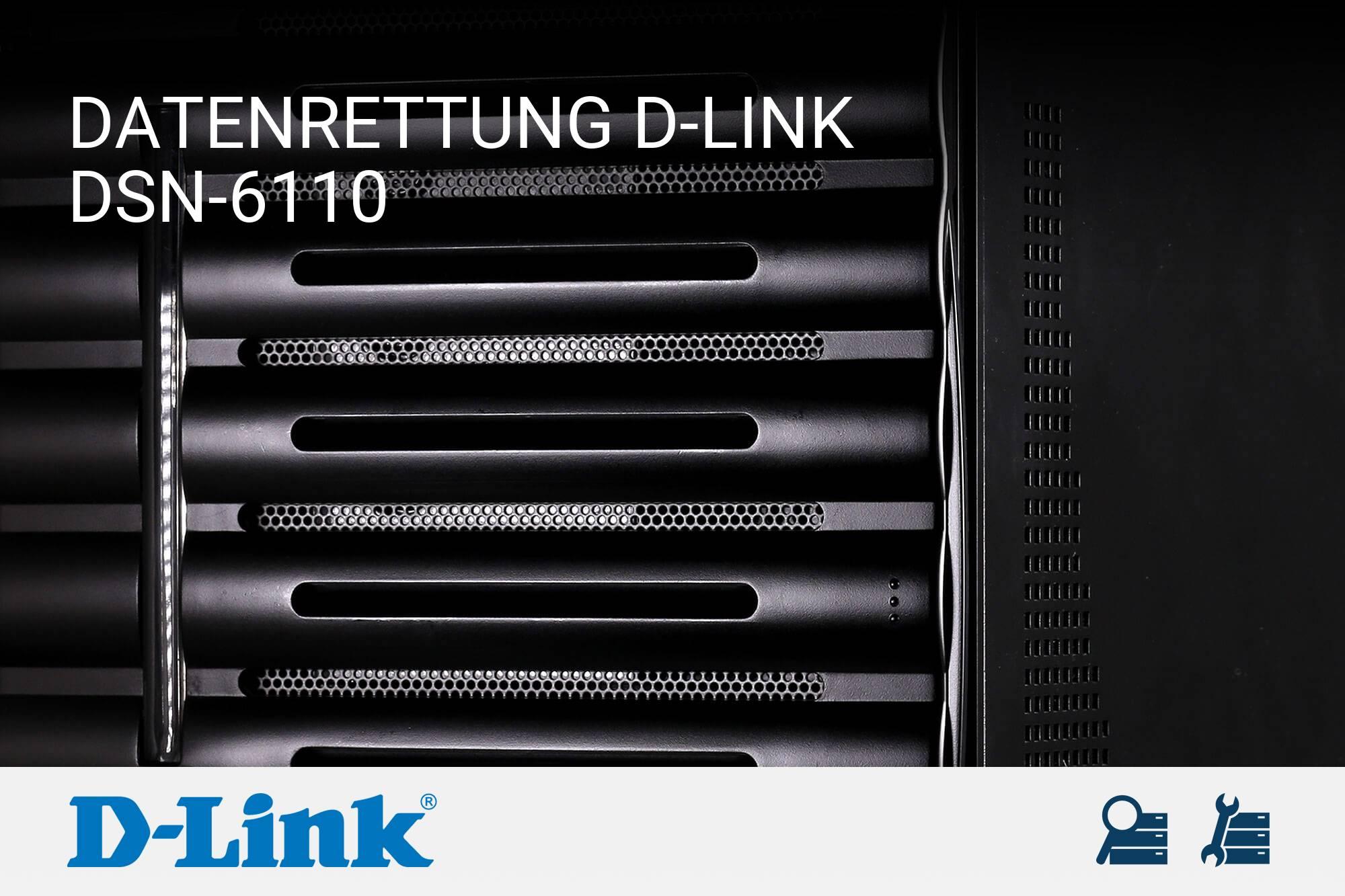 D-Link DSN-6110