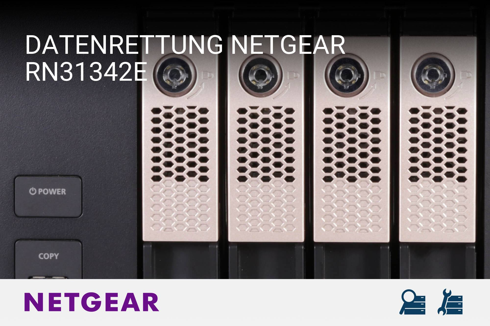 Netgear RN31342E