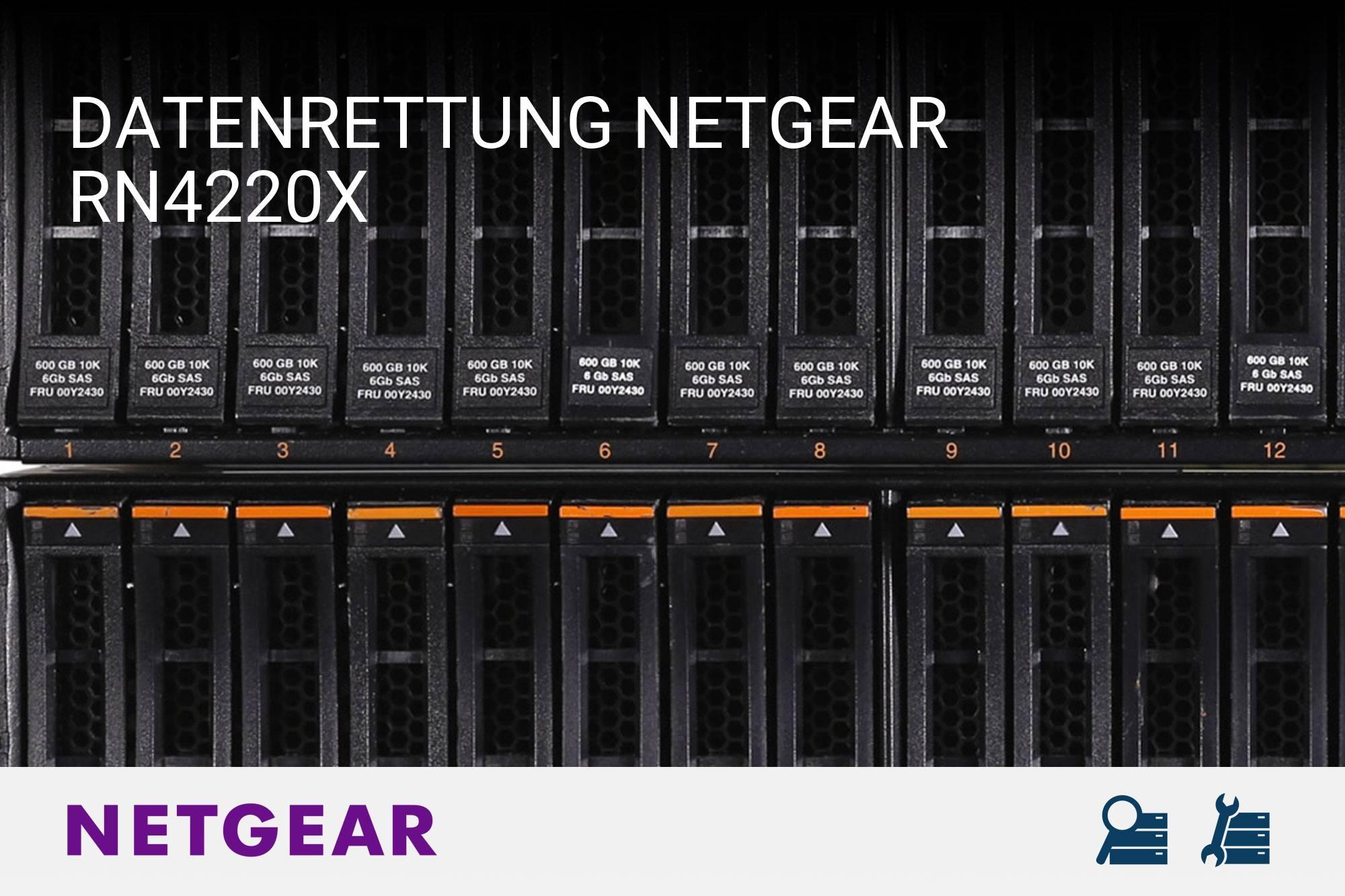 Netgear RN4220X