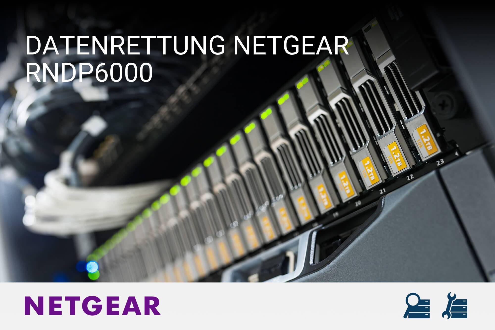 Netgear RNDP6000