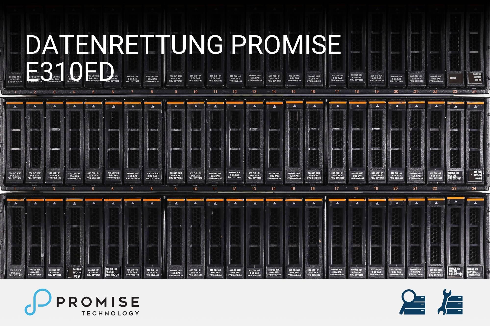 Promise E310fD