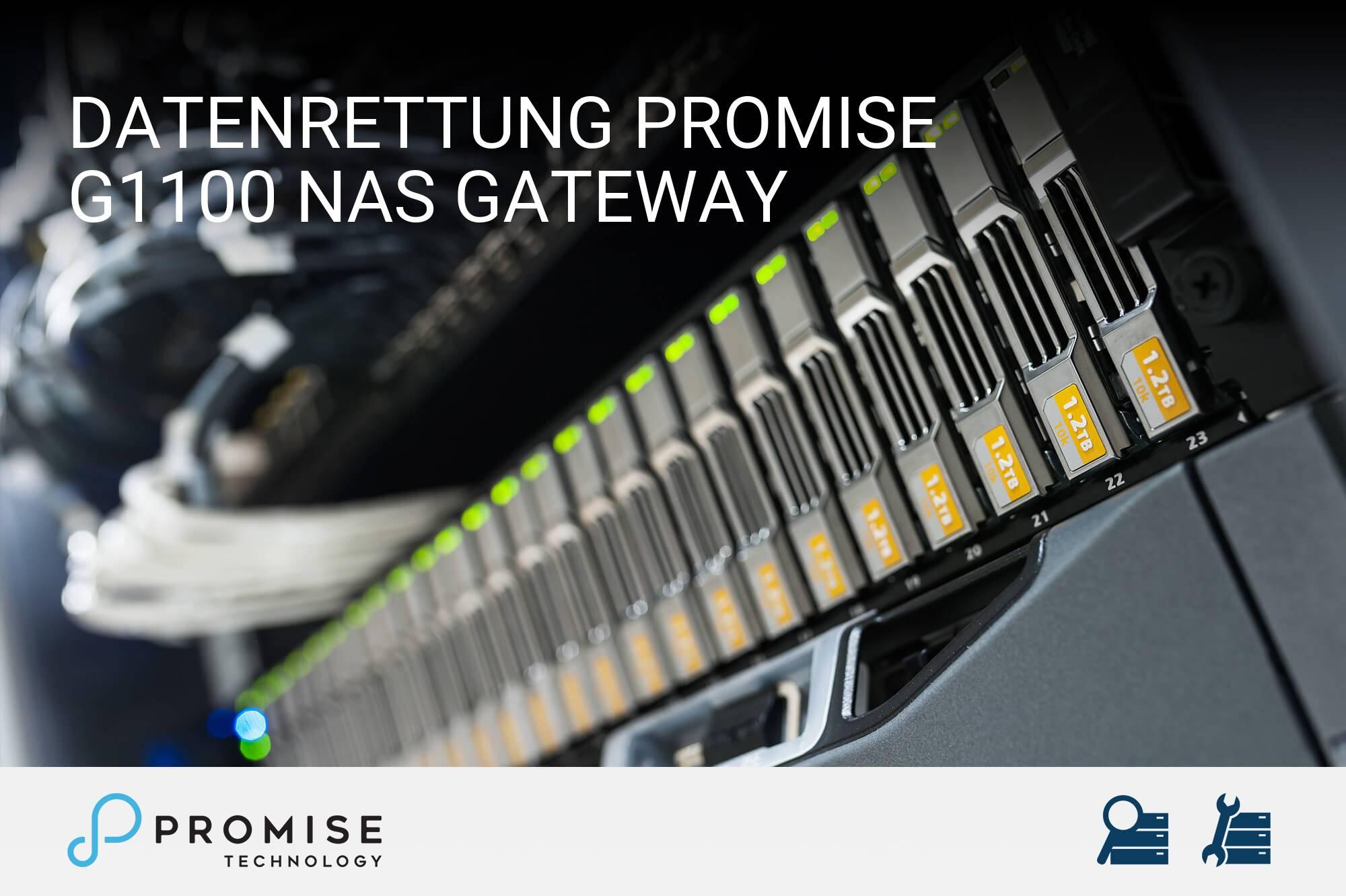 Promise G1100 NAS Gateway