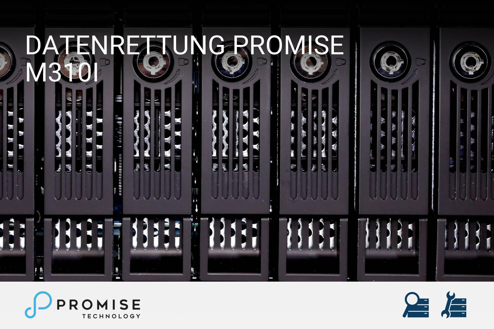 Promise M310i