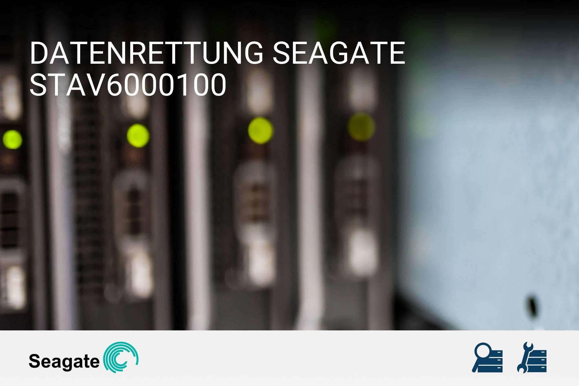 Seagate STAV6000100