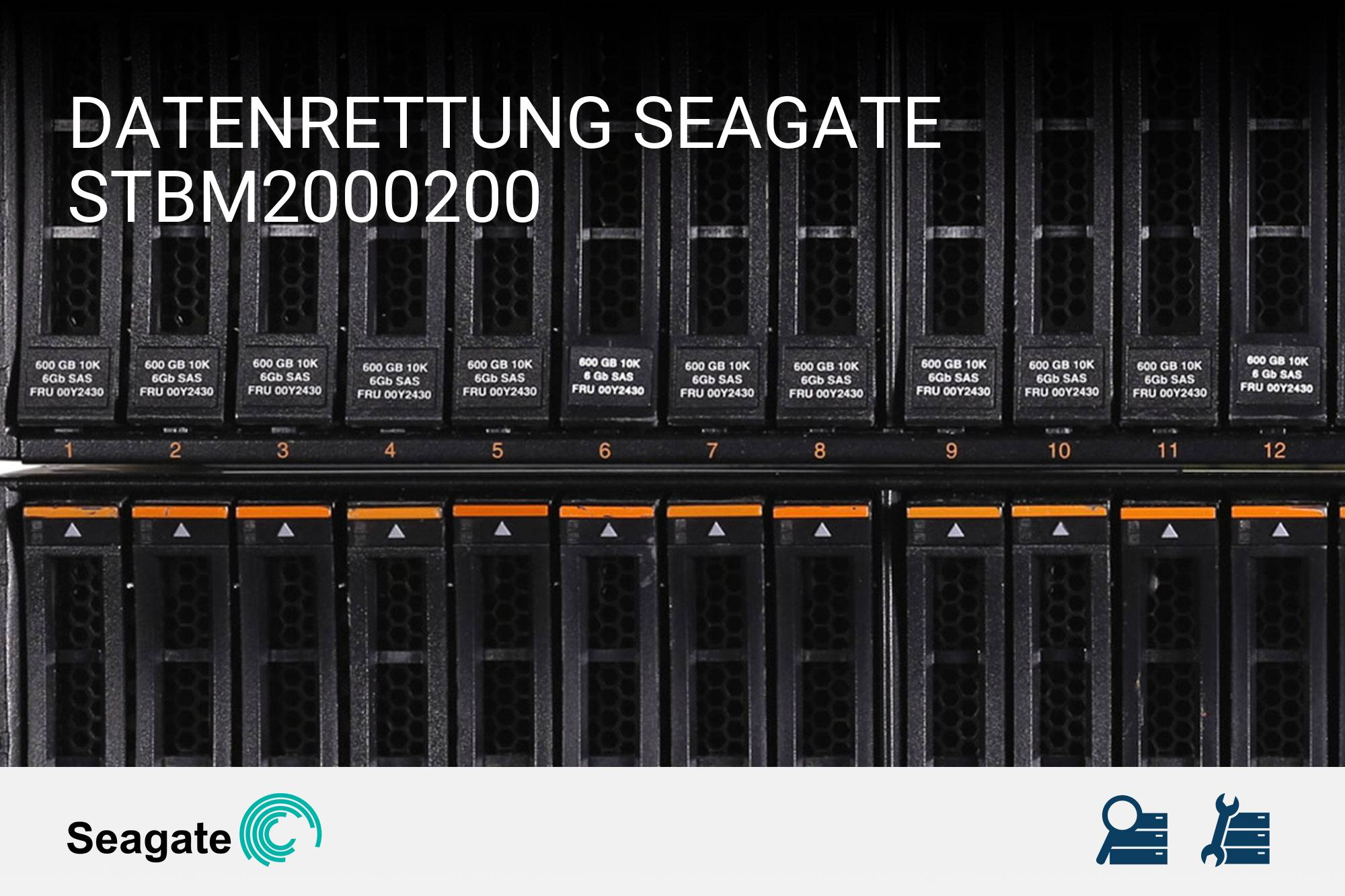 Seagate STBM2000200