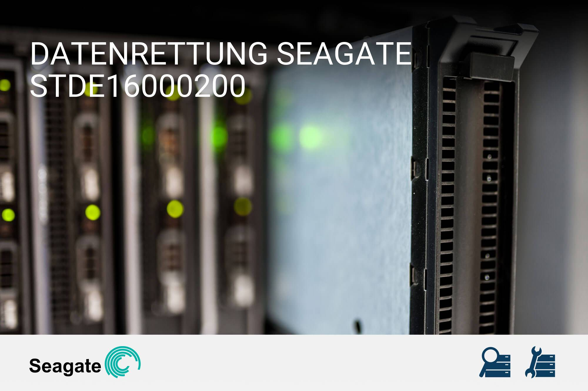 Seagate STDE16000200