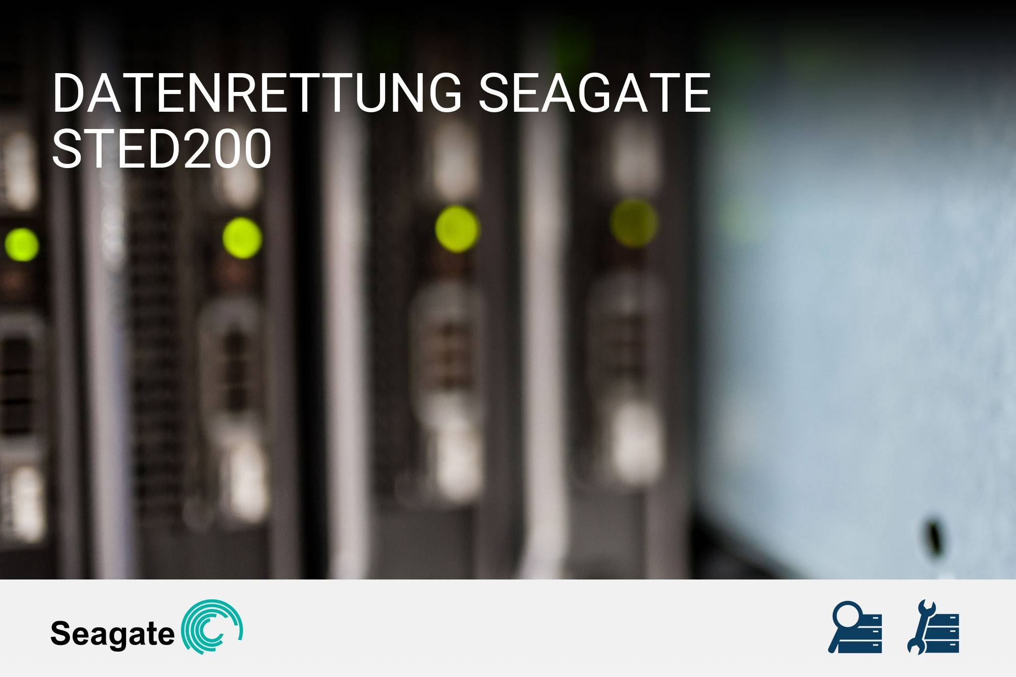 Seagate STED200