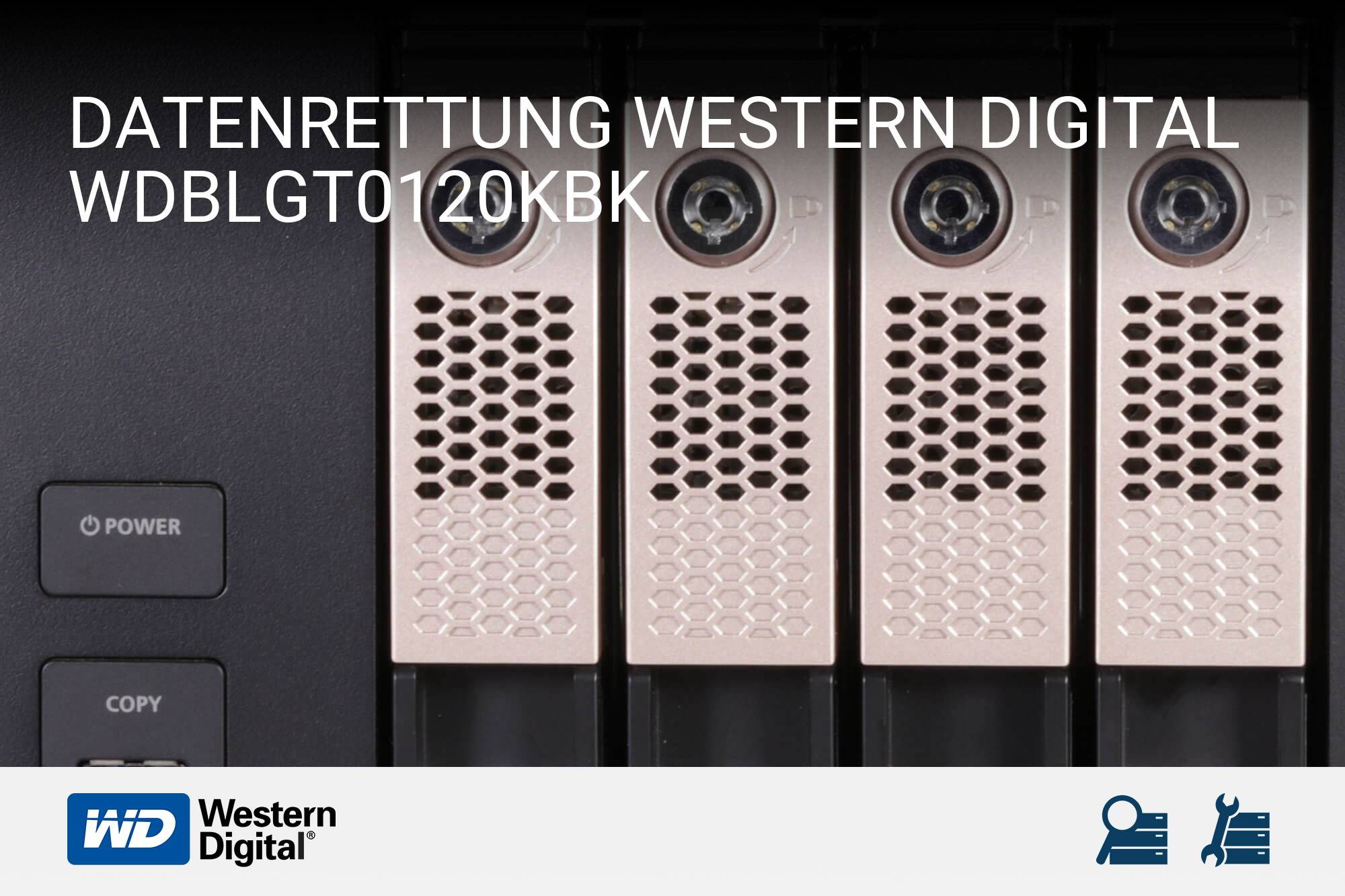 Western Digital WDBLGT0120KBK