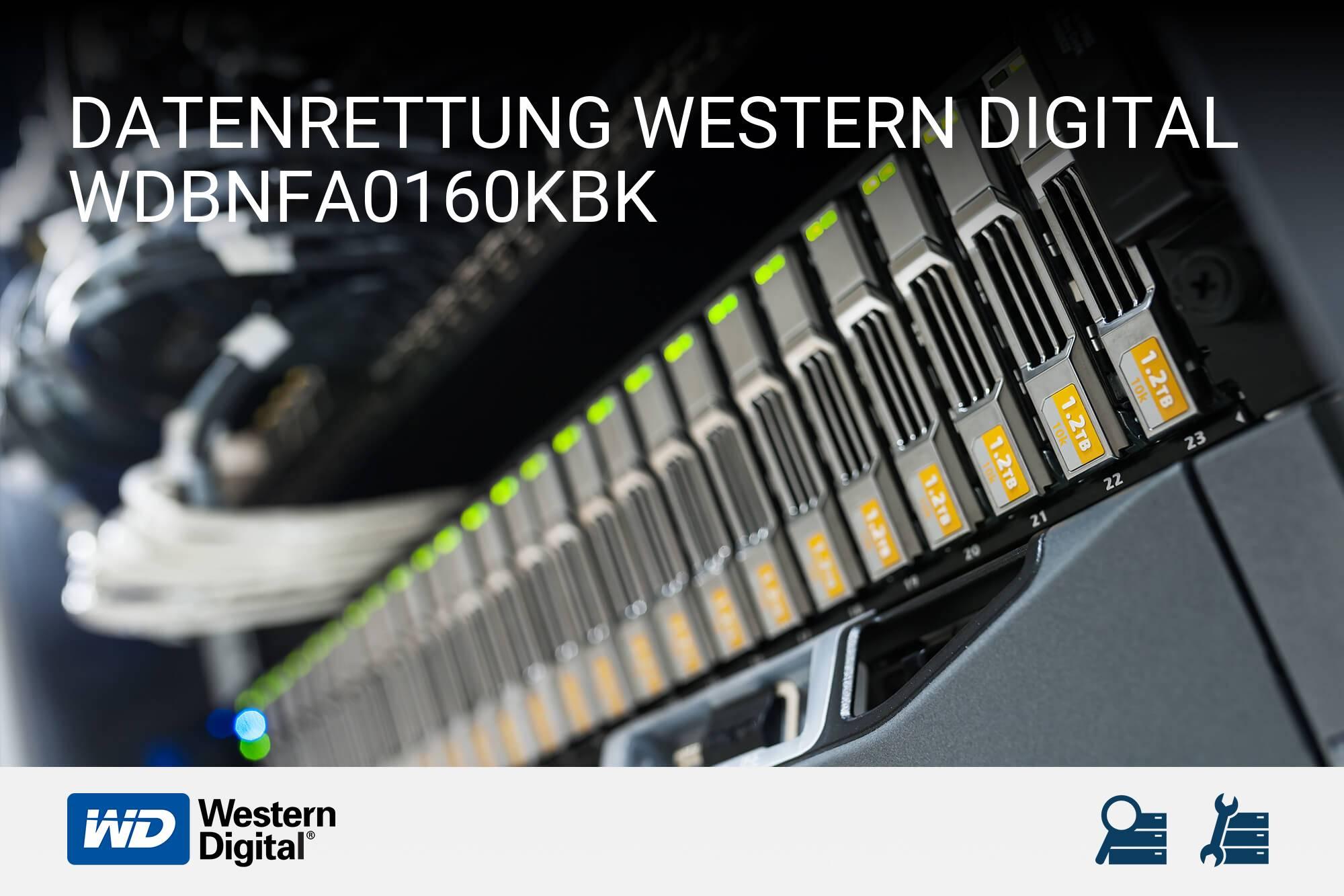 Western Digital WDBNFA0160KBK
