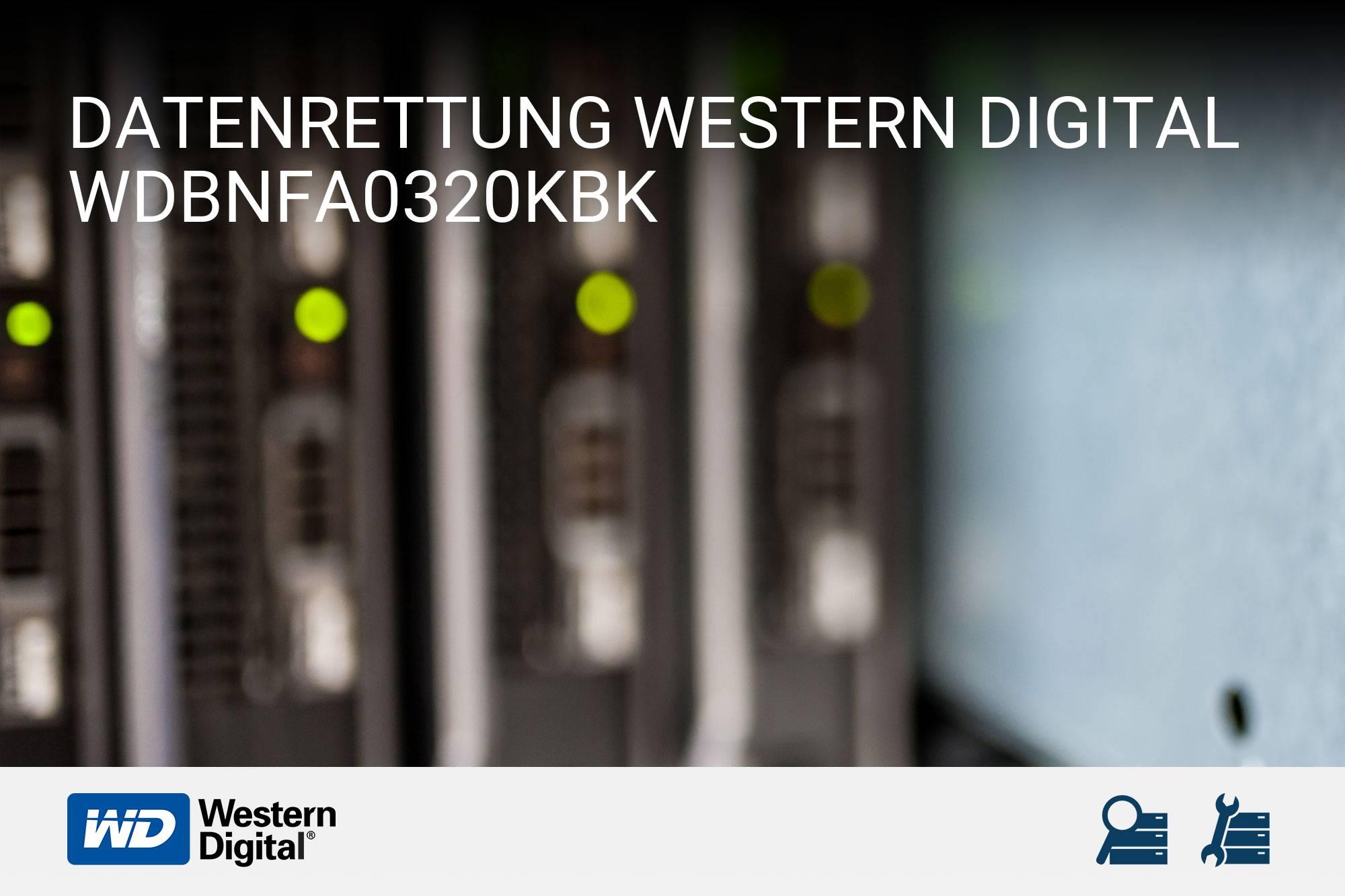 Western Digital WDBNFA0320KBK