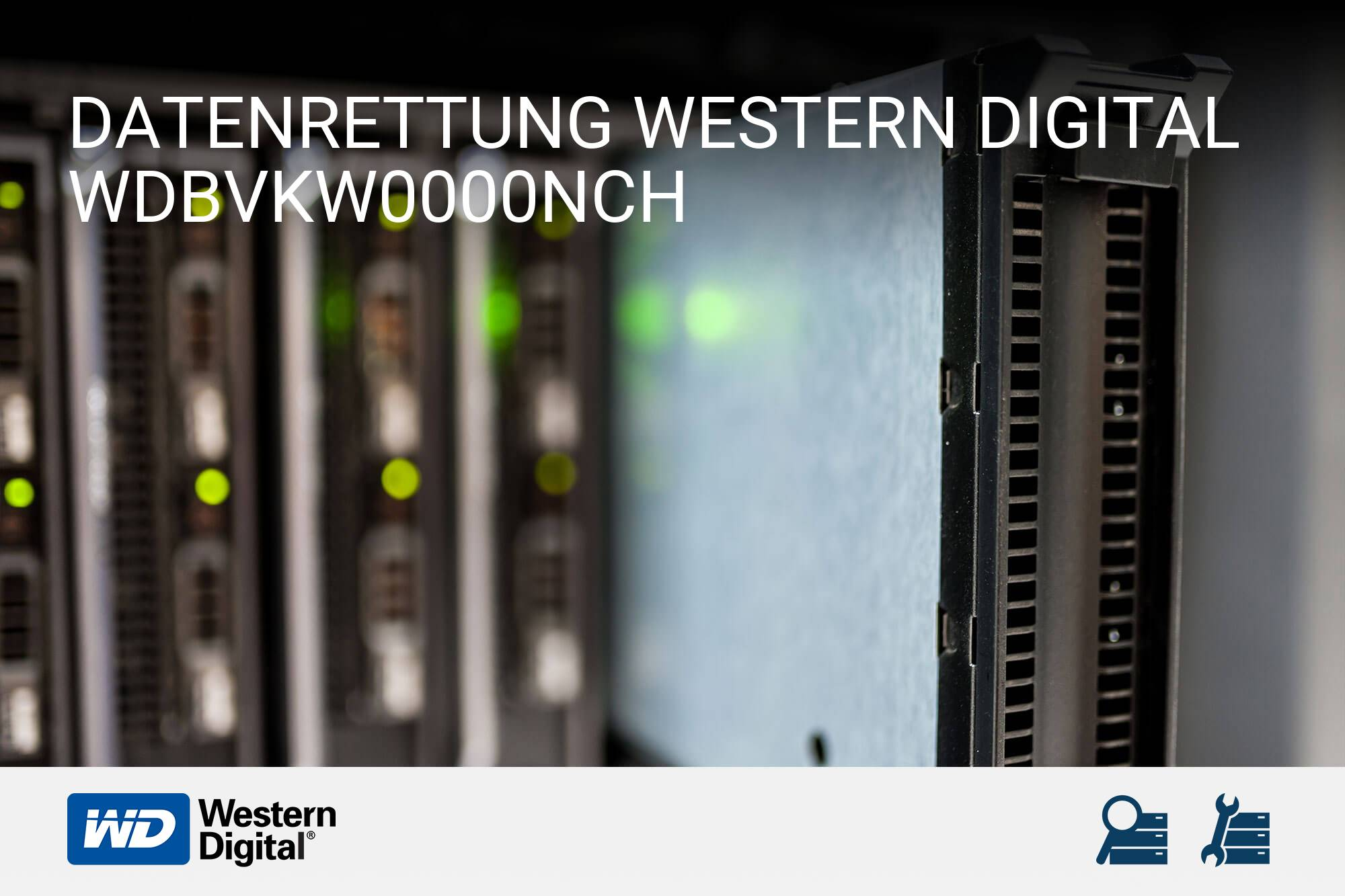 Western Digital WDBVKW0000NCH