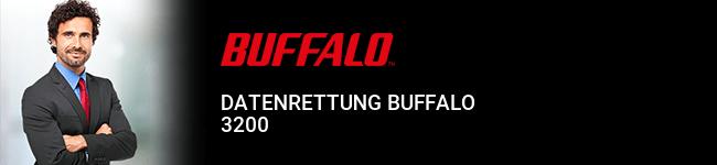 Datenrettung Buffalo 3200