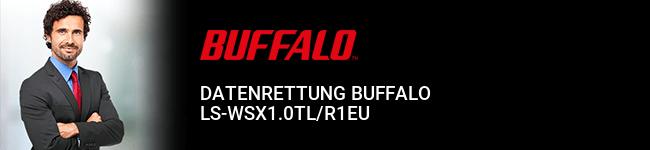 Datenrettung Buffalo LS-WSX1.0TL/R1EU