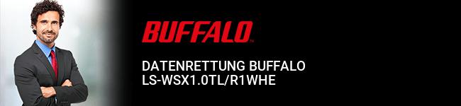 Datenrettung Buffalo LS-WSX1.0TL/R1WHE