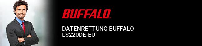 Datenrettung Buffalo LS220DE-EU