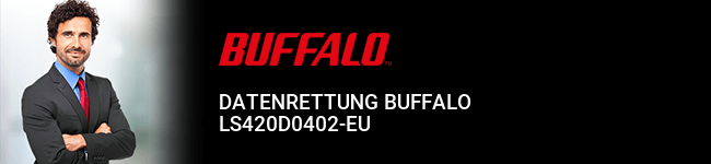 Datenrettung Buffalo LS420D0402-EU