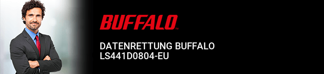 Datenrettung Buffalo LS441D0804-EU