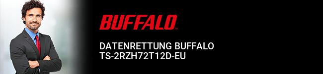 Datenrettung Buffalo TS-2RZH72T12D-EU